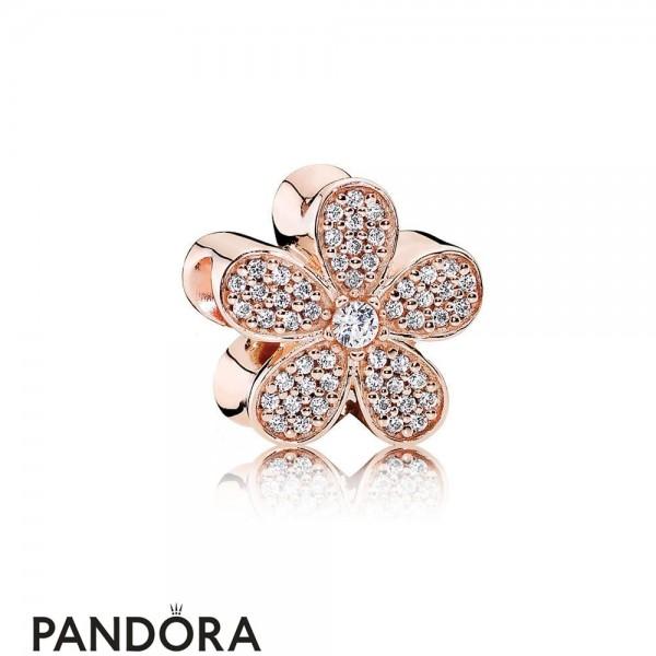 Pandora Nature Charms Dazzling Daisy Charm Pandora Rose Clear Cz Jewelry