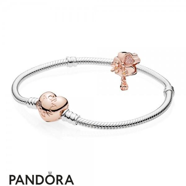 Pandora Rose Wildflower Meadow Gift Set Jewelry