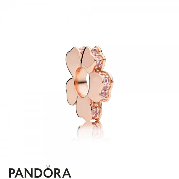 Jewelry Pandora Rose Wildflower Meadow Spacer Charm Jewelry