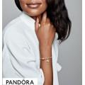 Pandora Rose With Sterling Silver Pandora Rose Clover & Ladybird Hanging Charm Jewelry