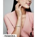 Pandora Rose Enamel Pandora Rose Reflexions Pink Ladybird Clip Charm Jewelry